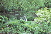 view [Frog Pond]: looking at pond past perennials, statue, and through trees. digital asset: [Frog Pond]: looking at pond past perennials, statue, and through trees.: 2002 Jun.