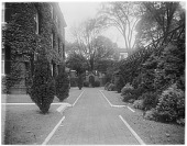 view [John Brown House]: lawn borders and plantings next to the house. digital asset: [John Brown House] [glass negative]: lawn borders and plantings next to the house.