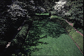view [Rochambeau House]: the west garden from above. digital asset: [Rochambeau House]: the west garden from above.: 2000 May.