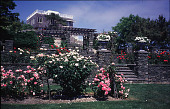 view [Beacon Ridge South]: rose beds, steps to oval enclosure, pergola, and house on ridge. digital asset: [Beacon Ridge South]: rose beds, steps to oval enclosure, pergola, and house on ridge.: 1999 Jun.