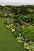 view [The Whim]: cloud topiary boxwood punctuate perennial borders. digital asset: [The Whim]: cloud topiary boxwood punctuate perennial borders.: 2009 Jun.
