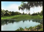 view Middleton Place digital asset: Middleton Place: [between 1914 and 1949?]