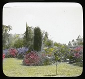 view [Magnolia Plantation & Gardens]: a view of the gardens with the main plantation house on the right. digital asset: [Magnolia Plantation & Gardens]: a view of the gardens with the main plantation house on the right.: [between 1914 and 1949?]