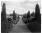 view [Drummond Castle]: looking down an axial walkway. digital asset: [Drummond Castle] [glass negative]: looking down an axial walkway.