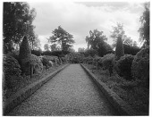 view [Drummond Castle]: looking along an edged garden path. digital asset: [Drummond Castle] [glass negative]: looking along an edged garden path.