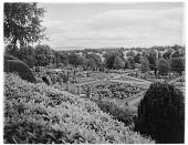 view [Drummond Castle]: an overhead view of the parterre gardens. digital asset: [Drummond Castle] [glass negative]: an overhead view of the parterre gardens.