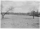 view [Unidentified Sites]: a farm in an unidentified location. digital asset: [Unidentified Sites] [glass negative]: a farm in an unidentified location.