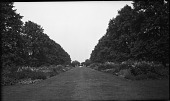 view [Unidentified Sites]: a public garden in an unidentified location. digital asset: [Unidentified Sites] [negative]: a public garden in an unidentified location.