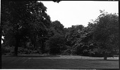 view [Unidentified Sites]: an unidentified location, probably in an urban park. digital asset: [Unidentified Sites] [negative]: an unidentified location, probably in an urban park.