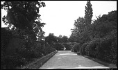 view [Unidentified Sites]: a walkway and garden border in an unidentified location. digital asset: [Unidentified Sites] [negative]: a walkway and garden border in an unidentified location.