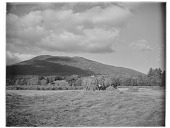 view [Miscellaneous Sites in New Hampshire, Series 1]: men loading hay onto a horse-drawn wagon in the Saco River Valley in the vicinity of Intervale, with Mt. Kearsarge North in the distance. digital asset: [Miscellaneous Sites in New Hampshire, Series 1] [glass negative]: men loading hay onto a horse-drawn wagon in the Saco River Valley in the vicinity of Intervale, with Mt. Kearsarge North in the distance.