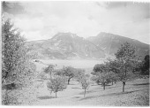 view [Miscellaneous Sites in Switzerland]: looking down through a field and what may be an orchard across the Thunersee to the Ralligstock (left) and Niederhorn (right), near Spiez. digital asset: [Miscellaneous Sites in Switzerland] [glass negative]: looking down through a field and what may be an orchard across the Thunersee to the Ralligstock (left) and Niederhorn (right), near Spiez.