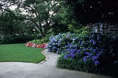 view [Home of Mr. & Mrs. Jon Mosle]: looking south from the driveway, with hydrangeas in full bloom along the walkway to the front porch. digital asset: [Home of Mr. & Mrs. Jon Mosle]: looking south from the driveway, with hydrangeas in full bloom along the walkway to the front porch.: 2007 Jun.