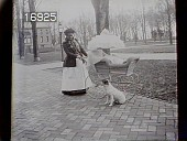view [Miscellaneous Images in Virginia]: an African American woman with a baby carriage, with a dog close by. digital asset: [Miscellaneous Images in Virginia] [nitrate negative]: an African American woman with a baby carriage, with a dog close by.