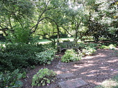 view [Upper Weyanoke]: A shady niche along the border with stepping stones made from repurposed brick. digital asset: [Upper Weyanoke]: A shady niche along the border with stepping stones made from repurposed brick.: 2017 September 28