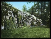 view [Eddy Garden] digital asset: [Eddy Garden]: [between 1914 and 1949?]
