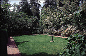 view [Bowman Garden]: sundial garden, Spring 1999, showing croquet lawn with white Cornus kousa underplanted with Azalea 'Everest' and Iberis sempervirens (candytuft) overhanging walk; filbert, Corylus avellana 'Contorta' (Harry Lauder's walking stick) in l... digital asset: [Bowman Garden]: sundial garden, Spring 1999, showing croquet lawn with white Cornus kousa underplanted with Azalea 'Everest' and Iberis sempervirens (candytuft) overhanging walk; filbert, Corylus avellana 'Contorta' (Harry Lauder's walking stick) in large pots in each corner of lawn.: 1999.