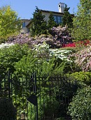 view [Green Garden]: looking up the hillside to the house over a tapestry of blooming azaleas and rhododendron. digital asset: [Green Garden]: looking up the hillside to the house over a tapestry of blooming azaleas and rhododendron.: 2016 May.