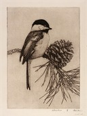 view Chickadee no. 1 digital asset number 1