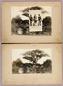 view African Scenes with Warriors--Savages and Tattooing, study folder for book Concealing Coloration in the Animal Kingdom digital asset number 1