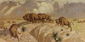 view (Buffalo Range, study for mural) digital asset number 1