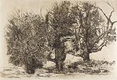 view Trees digital asset number 1