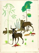 view Two Deer digital asset number 1