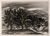 view Windblown Trees digital asset number 1