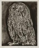 view Owl digital asset number 1