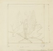 view Partridge with Ferns (scale drawing for Flora and Fauna of Maine) digital asset number 1