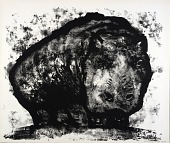 view (A Bestiary, portfolio) Hippopotamus digital asset number 1