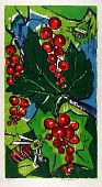 view Currant Berries, 1969 digital asset number 1
