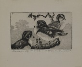 view Wood Ducks digital asset number 1