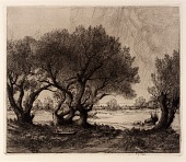 view Old Willows digital asset number 1