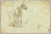 view Horse and Rider digital asset number 1