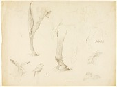 view Horse Study and Rabbits digital asset number 1