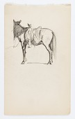 view Untitled (Horse) digital asset number 1