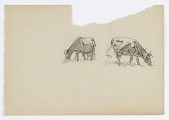 view Untitled (Two Cows) digital asset number 1
