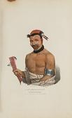 view WADT-HE-DOO-KAANA; Chief of the Winnebagoes, from The Aboriginal Portfolio digital asset number 1