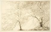 view Birches digital asset number 1