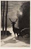 view Stag in the Moonlight digital asset number 1
