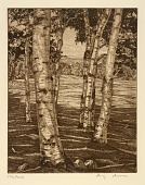 view Birches and Beyond digital asset number 1