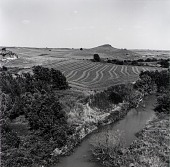 view Russell County, from the Kansas Documentary Survey Project digital asset number 1
