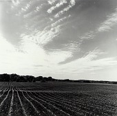 view Leavenworth County, from the Kansas Documentary Survey Project digital asset number 1
