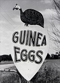 view Egg Sign, Allen County, from the Kansas Documentary Survey Project digital asset number 1