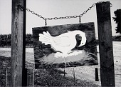 view Egg Sign, Atchison County, from the Kansas Documentary Survey Project digital asset number 1