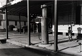 """view Paganucci Grocery and Market (now closed), 3824 Avenue L, Galveston, Texas, from """"The Corner Stores of Galveston,"""" Galveston County Cultural Arts Council digital asset number 1"""