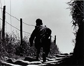 view Rome (Back of Boy Walking beside Barbed Wire Fence) digital asset number 1