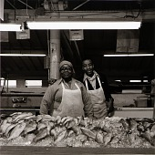 view Tammy's fish stand at the Northeast Market. digital asset number 1