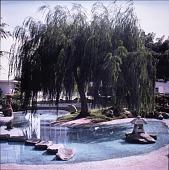 view Ornamental Garden digital asset number 1